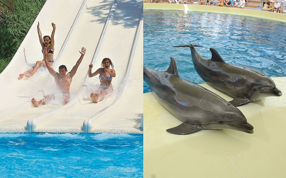 Waterpark/Dolphinpark